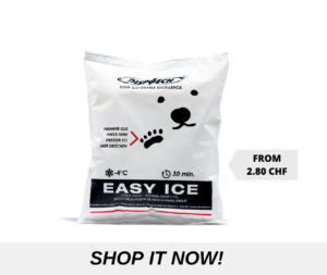 easy_ice_ch